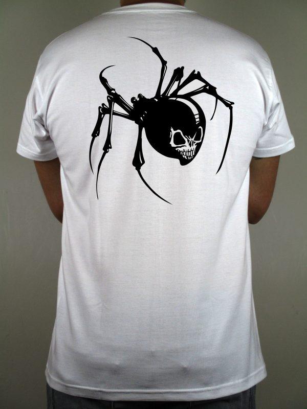 Para los amantes de las arañas